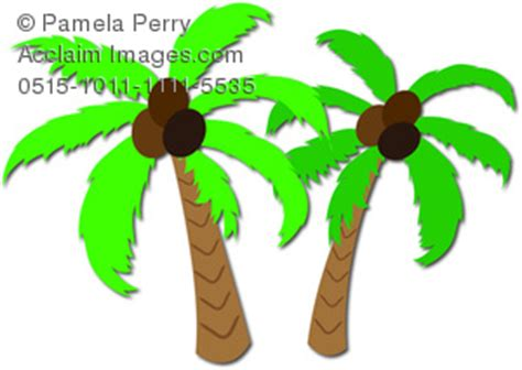 Research about coconut tree